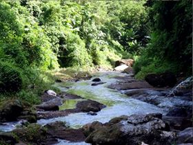 A watershed in one of the major river systems in the Philippines (Photo courtesy of WWF)