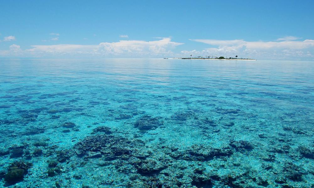 The Philippines' Tubbataha Reefs National Park became a National Marine Park in 1988, and was declared a UNESCO World Heritage Site in 1993. (Photo by: Gregg Yan/WWF-Philippines)