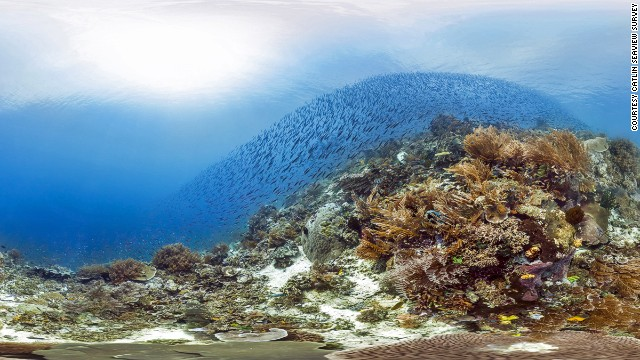 The Catlin Seaview Survey hopes monitoring reefs will help policy makers understand how reefs are being destroyed and what needs to be done to protect them. (Photo by: The Catlin Seaview Survey)