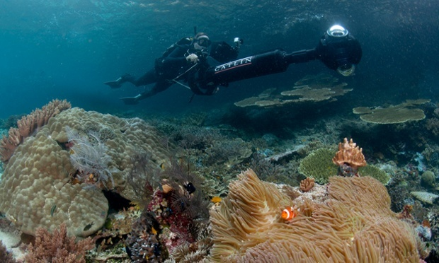 Catin Seaview Survey's SVII camera is capable of producing detailed maps of reef ecosystems far quicker than traditional methods. (Photo by: Catlin Seaview Survey)