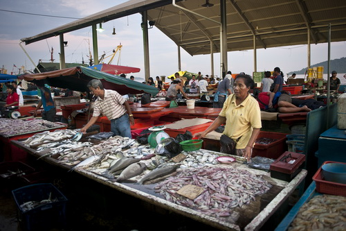 A stall at the fish landing in Kota Kinabalu, Malaysia  (Photo by: © USAID CTSP/Tory Read)