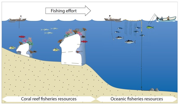 Nearshore FADs allow some coastal fishing effort to be transferred to oceanic fisheries resources, especially tuna. (Source: SPC Policy Brief 24/2014)
