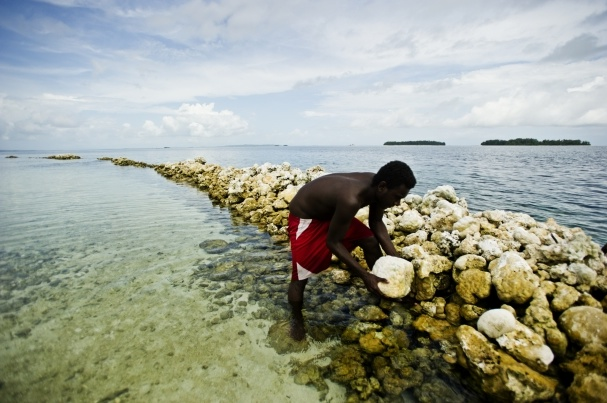 Building a sea wall in Gizo, Western Province, Solomon Islands. (Photo from: CTI-CFF)