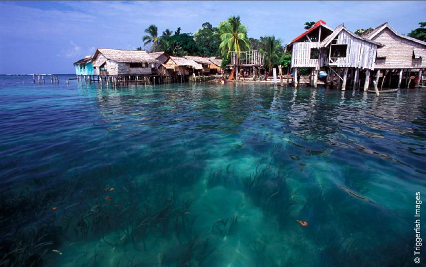 Coastal villages in the Solomon Islands depend on fish and other marine resources for income, food, and livelihood. (Photo from: Triggerfish Images, CTI-CFF)